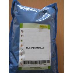 MUSCADE MOULUE. 1 Kg.