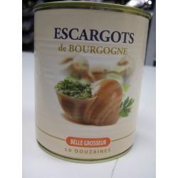 ESCARGOTS BOURGOGNE R H F 10 DZ  4/4